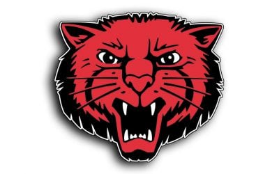Bearcat Foundation Scholarship