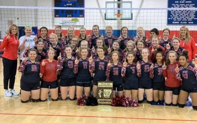 Jr Ladycats end season as 7-4A District Champions